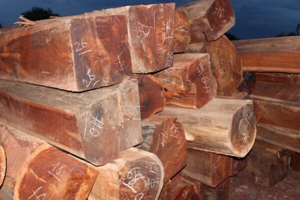 vật liệu gỗ căm xe