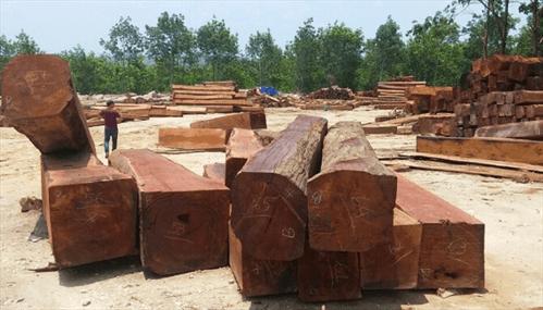 vật liệu làm nhà gỗ gụ
